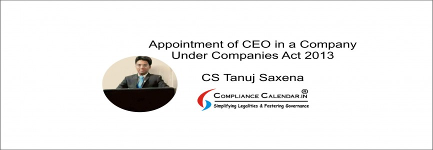 Appointment of CEO in a Company Under Companies Act 2013 By CS Tanuj Saxena