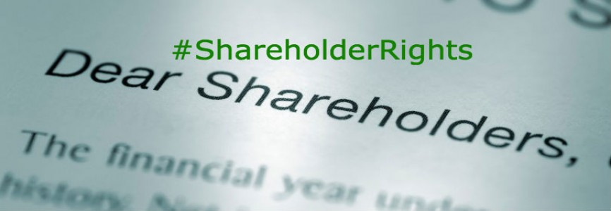 Ruling on Shareholder Rights to Inspect Company Records