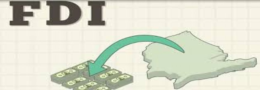 Department of Economic Affairs disposes five FDI proposals aggregating to Foreign Investment